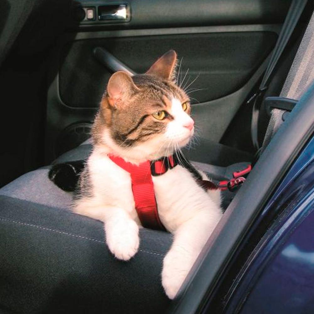 TRIXIE Cinto Segurança para Gatos