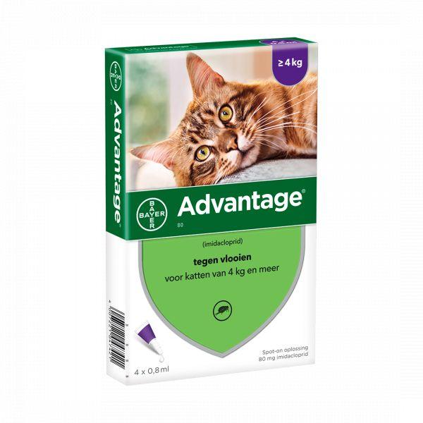 ADVANTAGE 80 - > 4 Kg